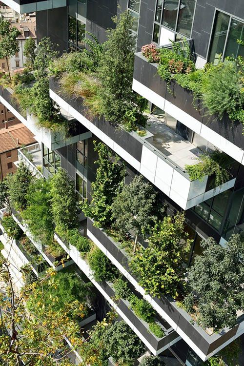bring-nature-into-the-city-8901-1